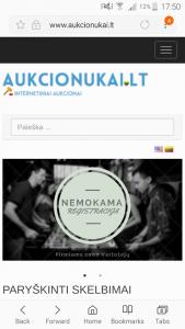 Internetinų Aukcionų tinklapis www.aukcionukai.lt