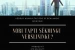 Verslo konsultacijos ir reklamos mokymai (pradininkams ir pažengusiems) - 1